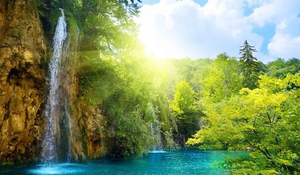 """Фотообои """"Лесные водопады"""""""