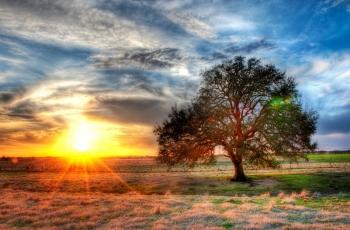 """Фотообои """"Красивый закат"""""""