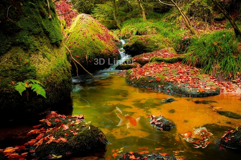 """3d обои для пола """"Камни, лес"""" купить визуализация №2"""