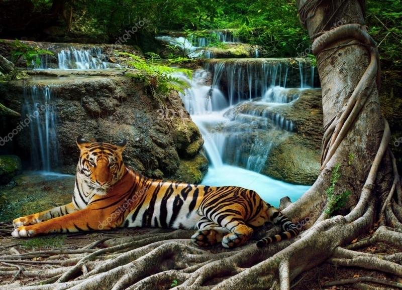"""Керамическая плитка с изображением """"Водопад и тигр"""""""