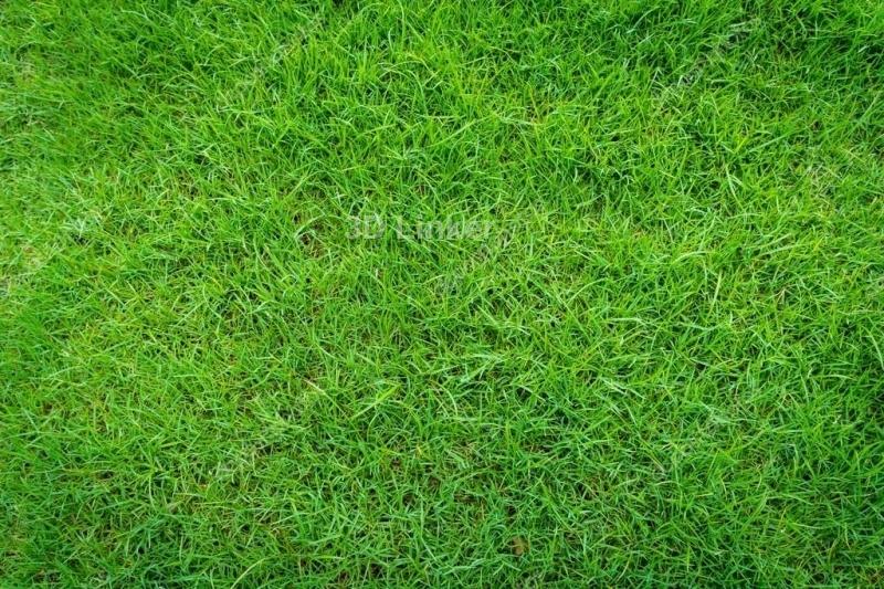 """Обои для пола в комнату """"Трава, газон"""" купить"""