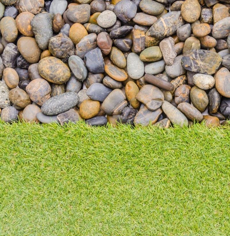 """Линолеум с рисунком """"Трава и большие камни"""" купить"""