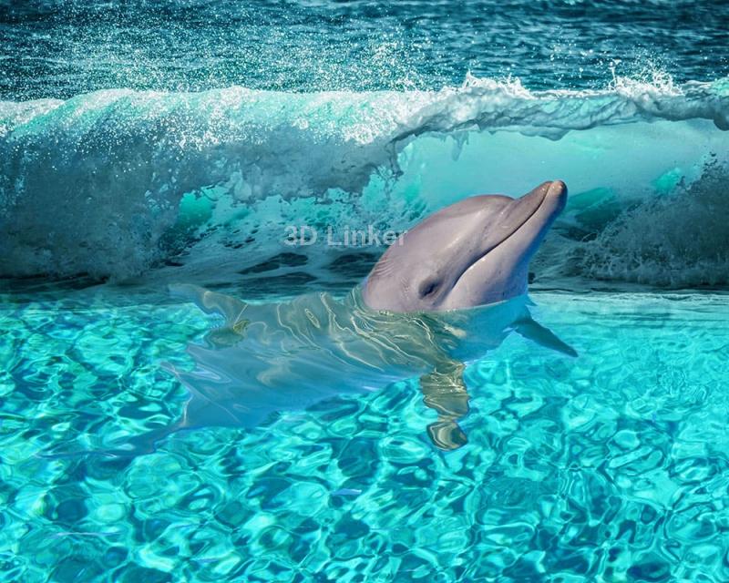 """Обои для пола """"Дельфин, волна"""". Наклейка, печать для наливного пола в интерьере №2"""