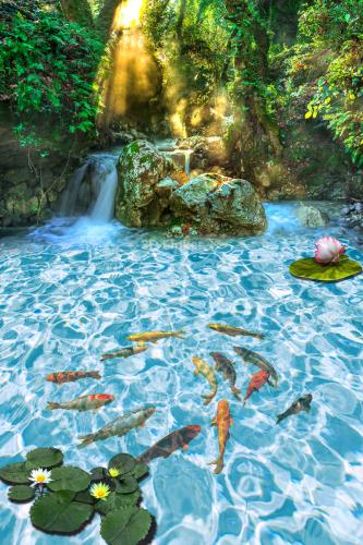 Фотообои на пол Водопад, рыбки, кувшинки