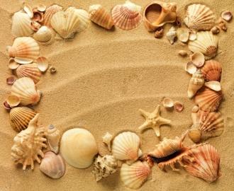 """Линолеум """"Песок, рисунок на песке, ракушки, морские звезды"""". Напольное покрытие купить."""