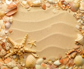 """Линолеум """"Желтый песок, морские ракушки и звезды"""". Напольное покрытие купить."""