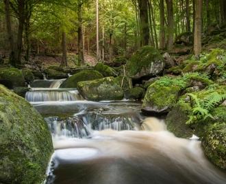 """Керамическая плитка с изображением """"Водопад. Камни. Лес"""""""
