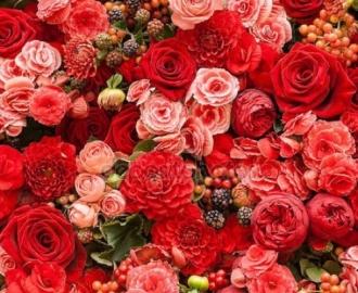 """Фотообои на стену купить """"Розы"""""""