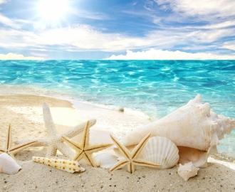 """Плитка с рисунком """"Берег, лазурное море, ракушки, морская звезда"""""""