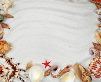 """Линолеум """"Белый песок, ракушки, красная морская звезда"""". Напольное покрытие купить."""