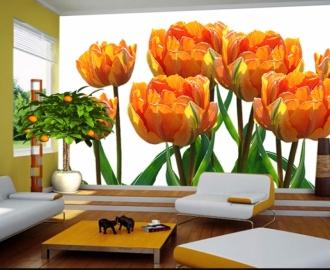 """Фотообои купить самоклеющиеся """"Оранжевые тюльпаны на любой фон"""""""