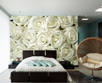 """Фотообои на стену """"Розы белые"""""""