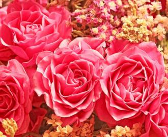 """Фотообои на стену""""Розы красные, цветы"""""""