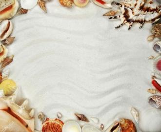 """Линолеум """"Белый песок, ракушки"""". Напольное покрытие купить."""