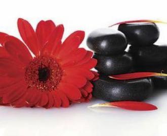 """Столешница наклейка на стол купить """"красный цветок, черные камни"""""""