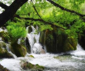 """Плитка с изображением """"Лесной водопад"""""""