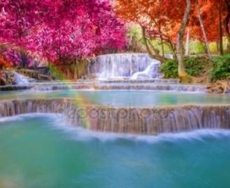 """Фотообои на стену купить """"Водопад, цветущие деревья"""""""