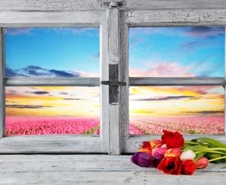 """Плитка с рисунком на стену для кухни """"Окно, тюльпаны"""""""