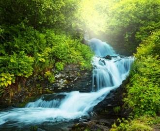 """Фотообои на стену купить """"Водопад в лесу"""""""