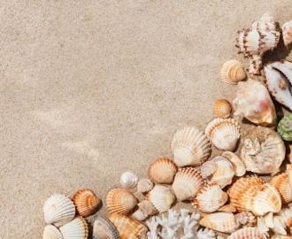 """Линолеум """"Песок, ракушки"""". Напольное покрытие купить."""