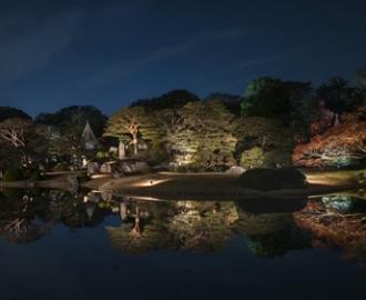 """Фотообои на стену купить """"Япония, парк, ночь"""""""