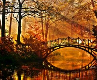 """Фотообои на стену купить """"Парк, мостик через пруд"""""""