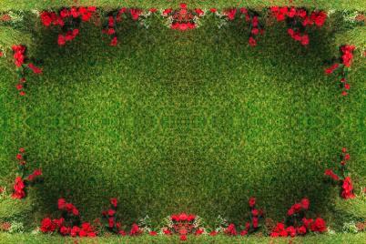 """Линолеум с рисунком """"Красные розы на зеленом ковре"""" Напольное покрытие купить."""