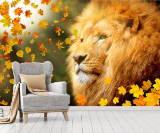 """Фотообои на стену животные """"Лев, солнце, осенние листья"""""""