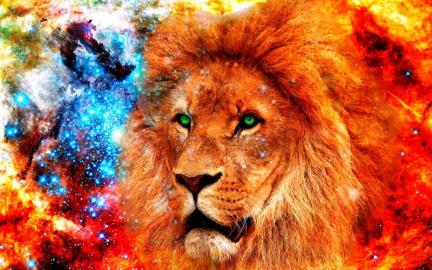 """Фотообои на стену животные """"Лев, космос, абстракция"""""""