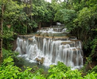 """Фотообои на стену купить """"Водопад , зеленый Лес"""""""