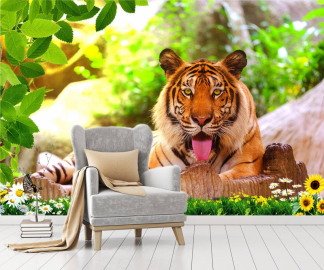 """Фотообои на стену животные """"Амурский тигр"""""""