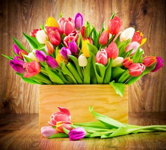 """Фотообои купить """"Тюльпаны в вазе"""""""