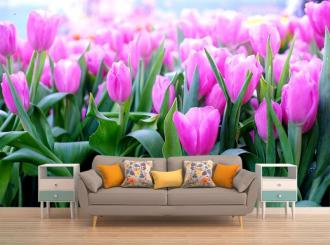 """Фотообои купить """"Розовые тюльпаны крупным планом, поле"""""""