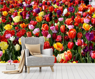 """Фотообои купить """"Много тюльпанов"""""""