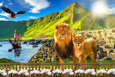 Фотообои на стену животные ЛЕВ И ЛЬВИЦА, КОРАБЛЬ, ГОРЫ, ВОДА, ПТИЦА