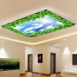 Фотообои на потолок НЕБО СОСНА
