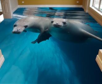 "Линолеум с рисунком ""Тюлени"""