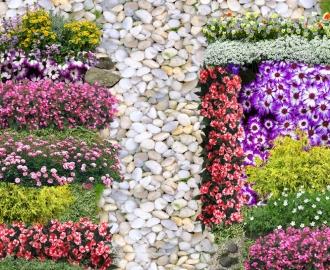 """Линолеум с рисунком """"Белые камни, тропинка, цветы"""" купить"""