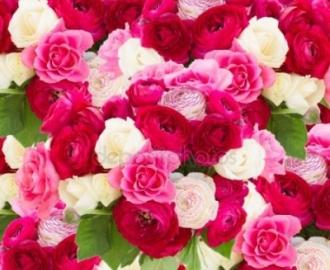 """3д обои для пола """"Розы розовые, белые"""""""