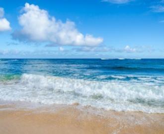 """Фотообои  """"Море, волны, берег, пена"""""""