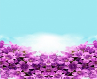 """Линолеум Напольное покрытие """"Цветки сирени, небо"""" купить."""