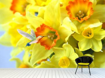 """Фотообои на стену цветы """"Желтые нарциссы"""""""