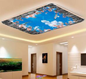 Фотообои на потолок ЧАЙКИ В НЕБЕ ЦВЕТЫ КАМЕННАЯ РАМКА