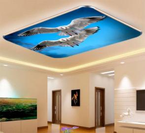 Фотообои на потолок ЧАЙКИ В НЕБЕ