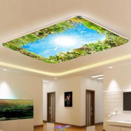 Фотообои на потолок ГОЛУБОЕ НЕБО ТРАВА ПОЛЕВЫЕ ЦВЕТЫ