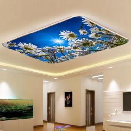 Фотообои на потолок РОМАШКИ НЕБО СОЛНЦЕ