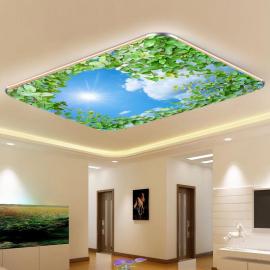 Фотообои на потолок НЕБО СОЛНЦЕ ЛИСТЬЯ