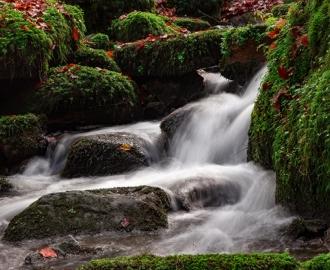 """Фотообои купить самоклеющиеся """"Водопад, мох, камни"""""""