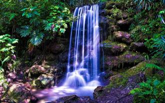 """Керамическая плитка с изображением """"Водопад, лес, зелень, камни"""""""